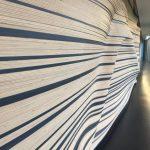 Stedelijk Museum, 's Hertogenbosch